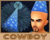 Birthday Hat 3