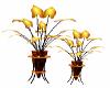 Halloween Plant 2