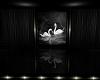 Swan Black Room