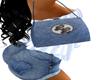 LL* blue purse