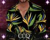 [CCQ]Mr Dana