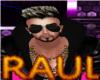 *Y* YOUTUBE RAUL