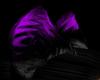 dark purple&black ear