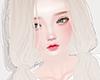Sibley Albino