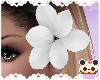 +White Side Flower
