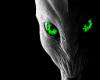 alien bed