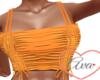 Stevie Orange