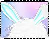 T|» Kawaii Bunny Ears