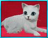 White Kitten Heart Bed