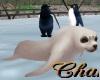 Cha`Zoo Animated Seal