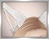 *D White Kitsune Ears