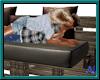 (A) Crate Sofa Kisses
