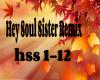 Hey Soul Sister Remix