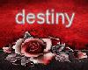destinywitch