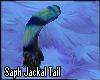 [AS] Jackal Tail