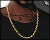 Ts. Gold Chain.