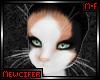 M! Juni Whiskers