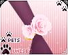 [Pets] Vida |wrist roses
