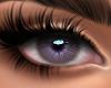 Serene - Lilac