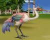 [SUN] Flamingo (animated