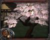 [J] DoJo Blossom Tree 3