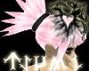 ~[Tsu]~ Sakura Shadow