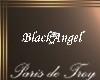 PdT Black Angel Necklace