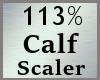 113% Calves Scale MA