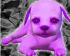 [AM]Cute violet Dog