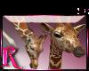 *R* Giraffes Enhancer