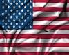 U.S. Steel Wall Flag
