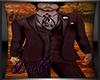 DQ Burgundy Full Suit