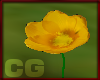 (CG) Park Wild flowers