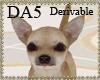 (A) Adopt A Chihuahua