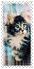 sticker_2500308_33322466