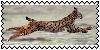 sticker_21920493_39107787