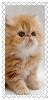 sticker_2500308_36353726
