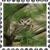 sticker_11163815_47095418