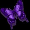adesivo_16745210_46778620
