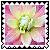 sticker_1432807_23373671
