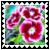 sticker_17637054_32962554