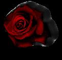 sticker_7823854_44031630
