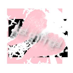 sticker_17151304_25971677