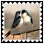 sticker_17637054_31842564
